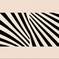 Vibrating Colors • Black & White Vibration - Figure/Ground