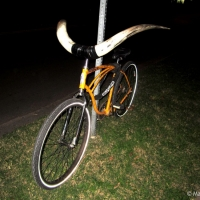 longhorn-bicycle-near-up-collective-east-2014